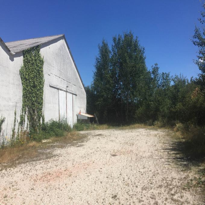 Vente Immobilier Professionnel Entrepôt Léognan (33850)